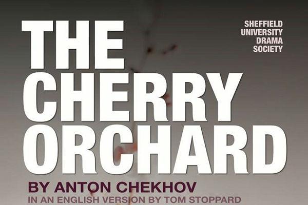 Cherry Orchard primary